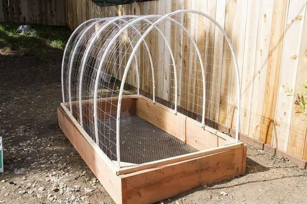 Greenhouse for cucumbers with own hands photo: how to make a greenhouse, video homemade, cucumber to build a device