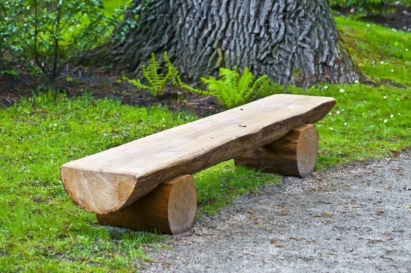 Simple bench from logs can make even without a back
