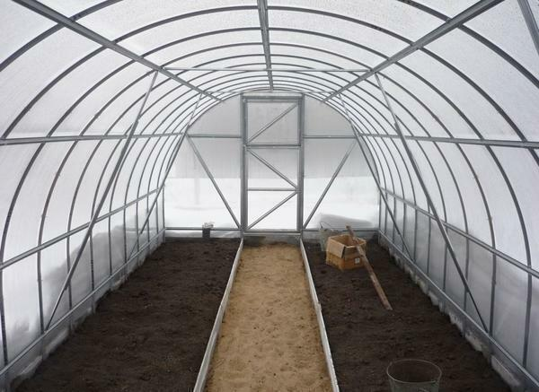 Working in the greenhouse in autumn: how to plant mustard, how to plant and do the cultivation, harvest and fertilize the land