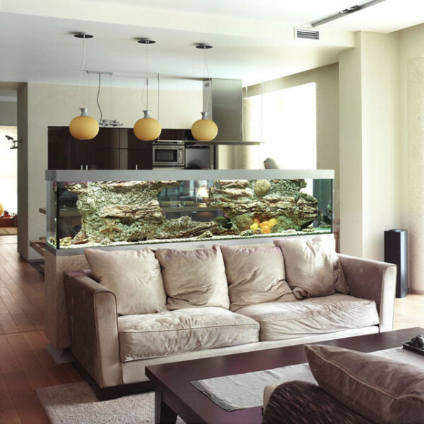 A large aquarium fits perfectly into our consideration the type of room