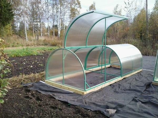 If you approach creatively the question, then such a simple construction as a greenhouse butterfly will greatly facilitate the care of plants
