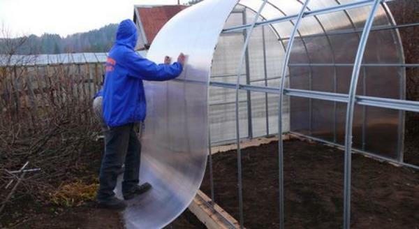 How to choose a polycarbonate greenhouse tips: the best reviews, inexpensive and correct, service life and choice