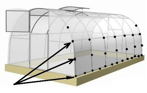 How to properly fix the polycarbonate on the greenhouse should know every summer resident
