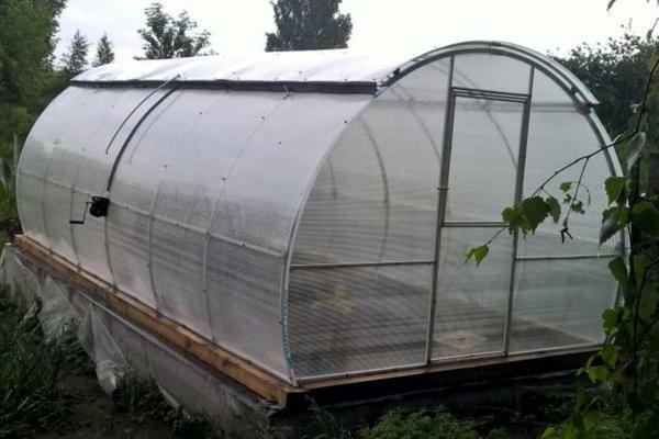 In summer, the sliding roof of the greenhouse will provide ventilation, and in winter it will not allow the plants to freeze