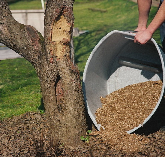 Dispose possible and directly, but still highly desirable composting