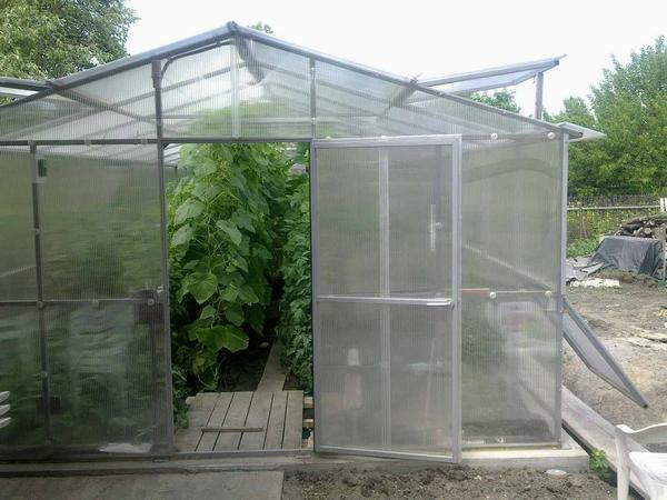 Production of greenhouses: Kinovskaya's producers in Russia, a square greenhouse, firms and rating, which is better Dachnitsa