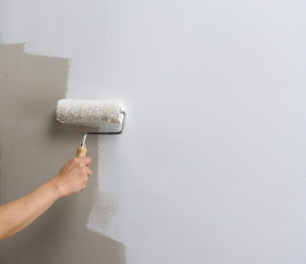 Ceresit CT 16 allows you to paint the walls before finishing