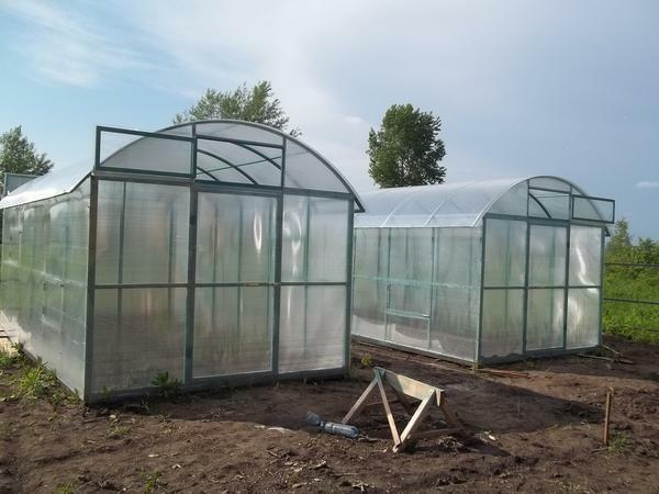 Types of greenhouses: a vertical greenhouse shell, own photos, what are the samples, a rectangular tunnel
