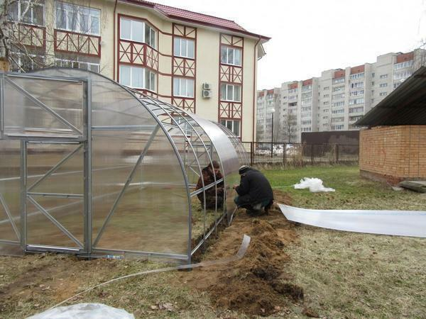 To build a greenhouse it is better to turn to professionals