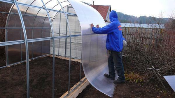 When assembling a polycarbonate greenhouse with your own hands, use fasteners with a rubber band