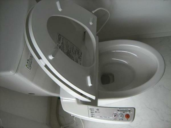 Remove the lid of the toilet can be handy if you competently approach this process