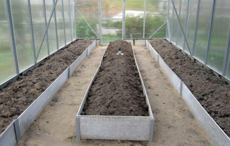 Grasslands in the greenhouse: how to make a photo, arrange properly Rozuma, slate height, the device of a greenhouse
