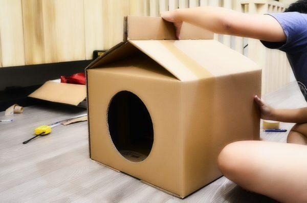 Houses for cats with their own hands can be made from scrap materials