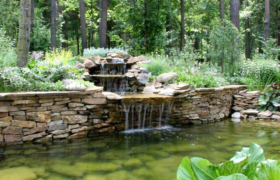 Landscape Design Ideas: Tips professionals