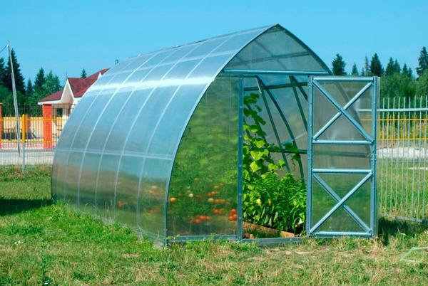 Installing the greenhouse around the world: how to put it, the relative location of the greenhouse