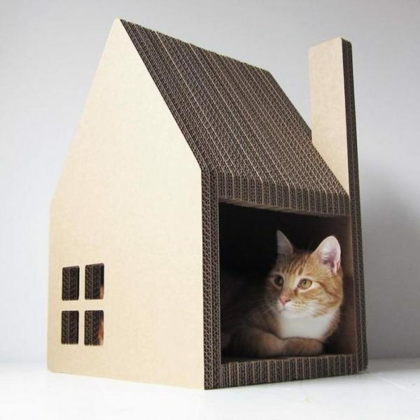 House made of cardboard - the cheapest housing option for your pet