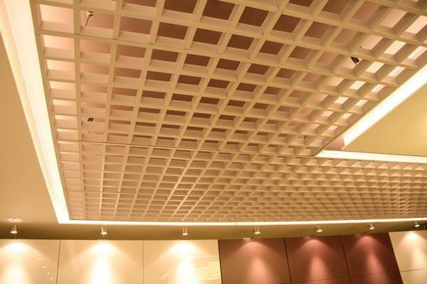 Grilyato ceiling: photo, montage, video instruction, cell sizes and types, manufacturers