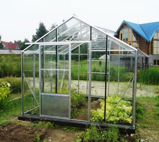 Greenhouse Botanik: reviews of producers, greenhouse Premium for farmers