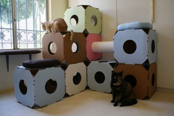 Homemade cat house should be as convenient and interesting for your pet