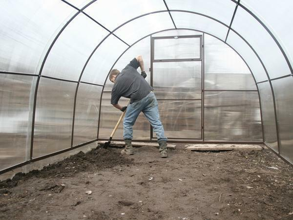 Before planting plants, the greenhouse and soil must be prepared