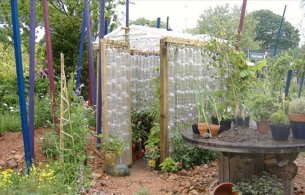 Hotbed of plastic bottles with their own hands: photos of greenhouses, make a video, a bottle of water from pet, for heat