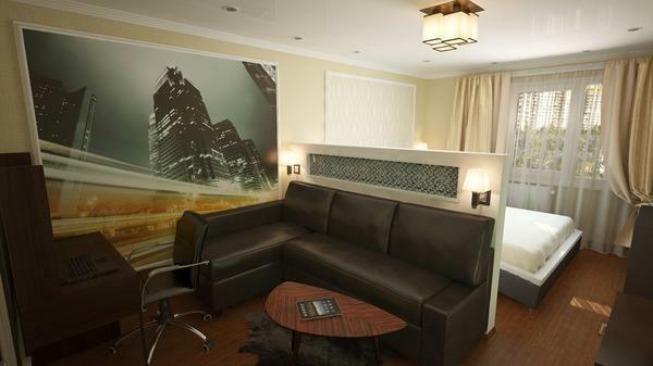 Room 17 square. M bedroom-living room photo: design and zoning, interior m2, meters combined for zoning