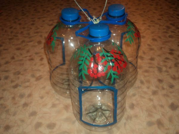 Articles made of plastic bottles for the garden: ornament to suburban area and other articles, videos, photos
