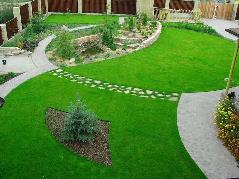 Landscaping ideas with his own hands: create beauty