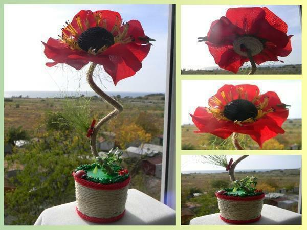 "Poppies are beautiful flowers, and the poppy ""Maki"" from coffee is a very interesting composition"