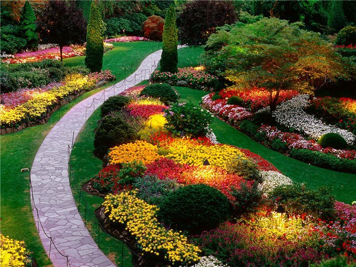 bright color combinations in the garden