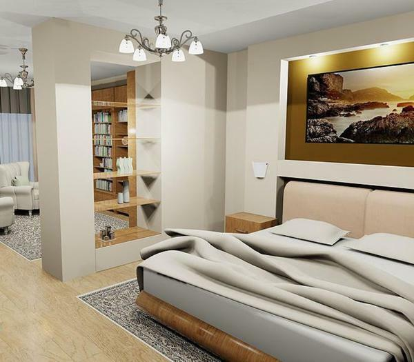 Zoning of the bedroom-living room 16 sq. M.M: hall design, interior photo, room one