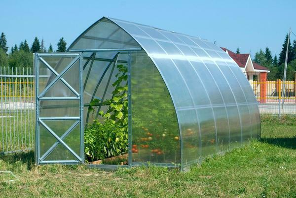 Among the advantages of polycarbonate greenhouses is worth noting the long service life and good functionality