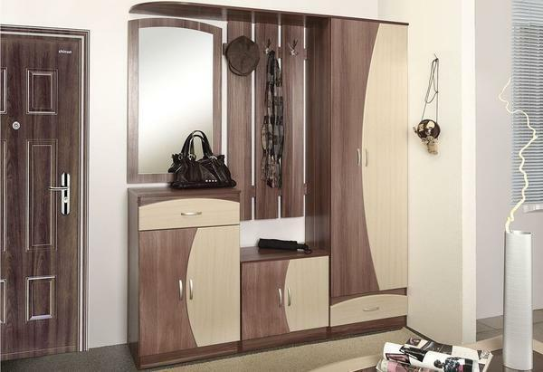 A narrow closet in the hallway: compartment and photo, a long corridor, a depth of 30 and 40 cm, the color of a light beech, the design of a five-meter