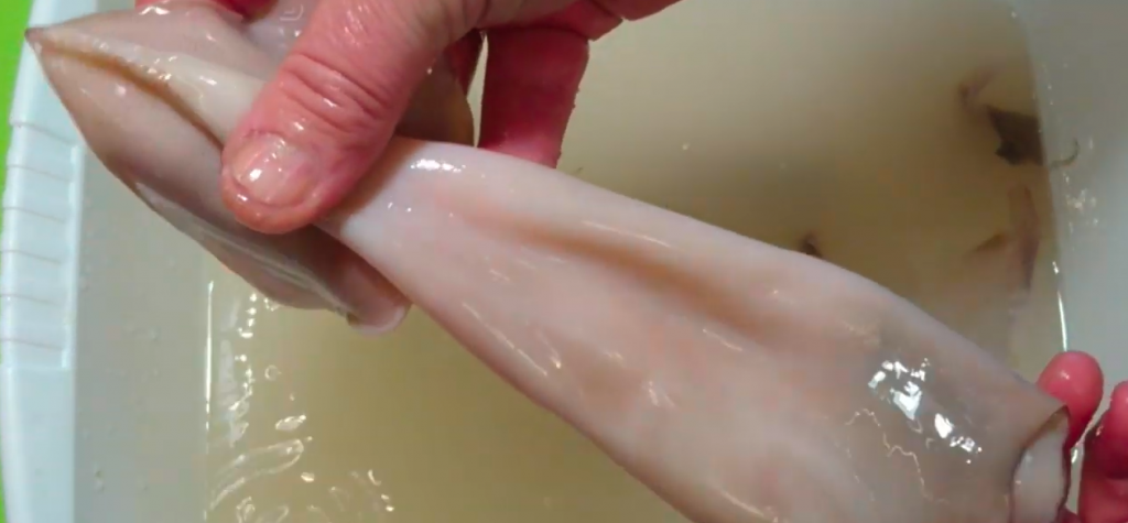 How to clean squid: step 5